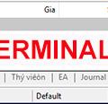 Cách khắc phục khi màn hình danh sách lệnh MT4 không thể hiển thị hoặc khi lỡ bấm nhầm xóa màn hình thông tin giao dịch (Terminal)