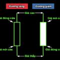 Cách đọc biểu đồ nến forex và cách sử dụng biểu đồ MT4